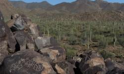 petroglyfy mezi kaktusy