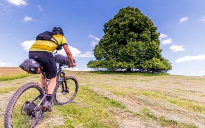 Bikepacking Bílými Karpatami