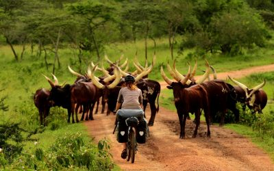 Terka a Bóša na cestě Afrikou