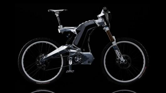 Extrémní E-bike M55