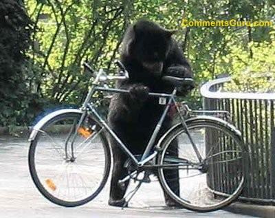Jak snadné je ukrást kolo