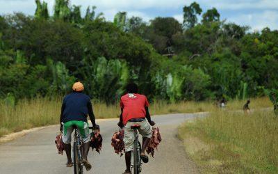 Fotky do soutěže – masová kola